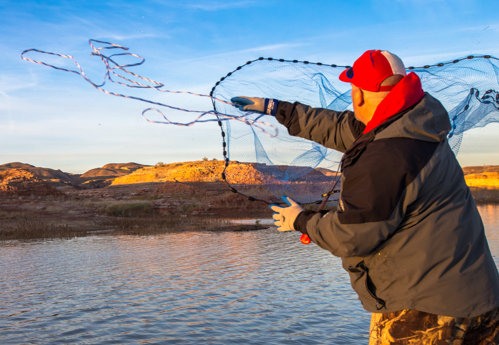 Lake Mead guide