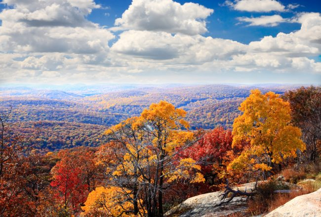 things to do in woodstock new york